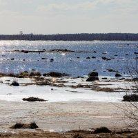 белое море весной :: Роман Дудкин