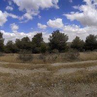 красоты Негева :: Осень