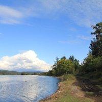 Озеро в Пицунде :: Валерий