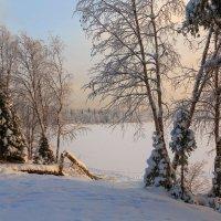 На форелевом озере... :: Владимир Чикота