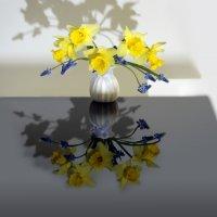 Весна на столе :: Olenka