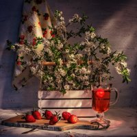 Один раз в год сады цветут.... :: Svetlana Sneg