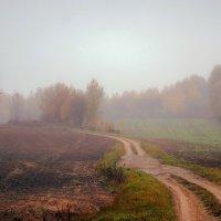 Осенняя дорога. :: adrow
