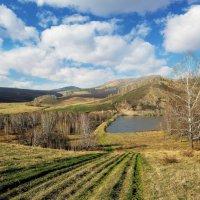 Весенний пейзаж :: Алексей Мезенцев