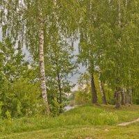 Перед грозой :: Ольга Винницкая (Olenka)