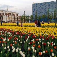 Московская весна :: Елена Кирьянова