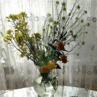 Букет  из  трав :: Ivana
