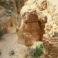 Иудейская пустыня – не только песок… :: сашка ярмарков