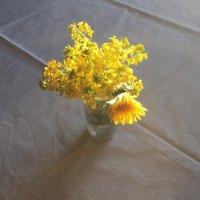Цветы на фоне... (Вариации с прекрасным :: Борис