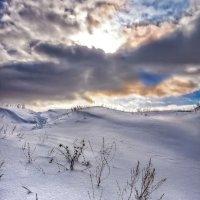 Земля и небо :: Владимир Шамота