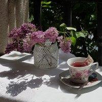 Утренний  чай :: Наталья (D.Nat@lia)