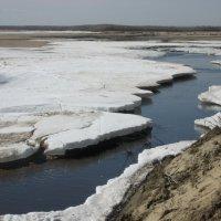 Скоро паводок :: Anna Ivanova