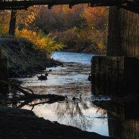 Под старым мостом. Смотрите под ноги. :: alteragen Абанин Г.