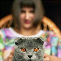 Cat (1999) :: Sergiy Gorbachuk
