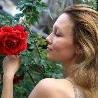 …Роза красная цвела… :: сашка ярмарков