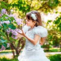 пока цветет сирень... :: Наталия Сугак