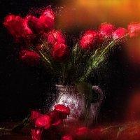 Страстные тюльпаны :: Евгений Кирюхин