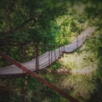 Волшебный мостик :: Андрей Молчанов