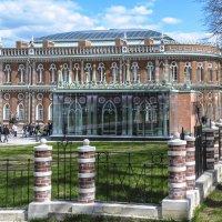 Царицинский дворец :: Георгий А