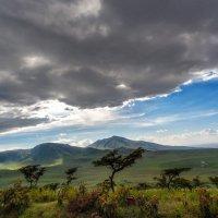 """Налетели"" тучки... Танзания! :: Александр Вивчарик"