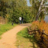 Прогулка в осень.... :: Юрий Моченов