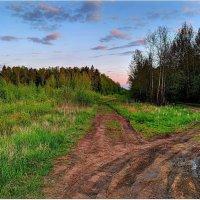 Прогулка на закате :: Вячеслав Минаев