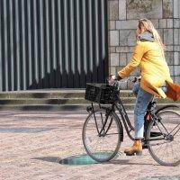 В стране велосипедистов :: Nina Karyuk