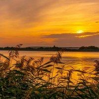 Закат раскрасил персиковой акварелью... :: Виктор Малород
