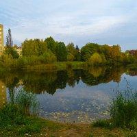 Осень в городе :: Ирина Майорова