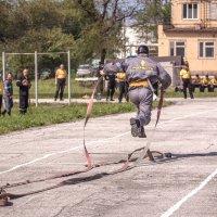 Полет к финишу. :: Андрей Скоробогач