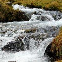 Река Малая Дукка :: Светлана Попова