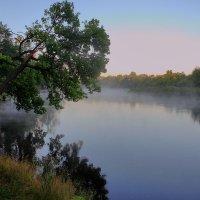 Проснуться в плену у тумана... :: Юрий Морозов