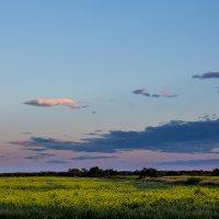 Закатное поле :: Станислав Маун