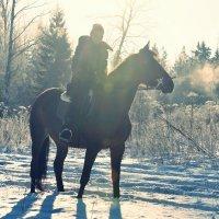 Морозный день :: Aleksandra Matveeva