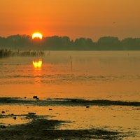 Солнце встает :: Гульнара Яумбаева