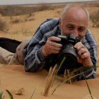 Фотограф-натуралист за работой :: Андрей Вигерчук