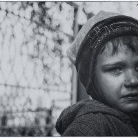 Рева-Корева :: Алексей Игнатьев