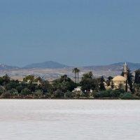 соленое озеро, кипр, ларнака :: Евгений Фролов