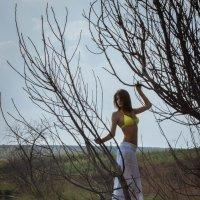 ...русалка на ветвях сидит... :: Ольга Возиян