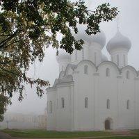 Туман :: Мария Кривошеина