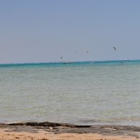 Красное море :: Елена Киричек