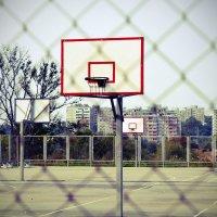 По ту сторону баскетбольной площадки :: Роман Fox Hound Унжакоff