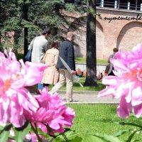 Туристы в Великом Новгороде :: Александра Борисик