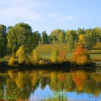 Ах эти краски Осени...!!! :: Татьяна Аистова