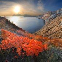 алеет скумпия на склонах древних гор :: viton