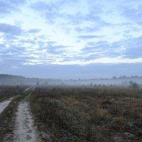 дорога в туман :: Roman Globa