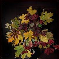 Осенний букет :: Владимир