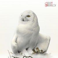 Белая на белом и вся в белом. :: Сергей Михайлов