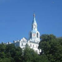 Спасо-Преображенский собор. :: Ирина Михайловна