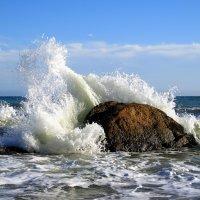 Море :: Slava Kappa